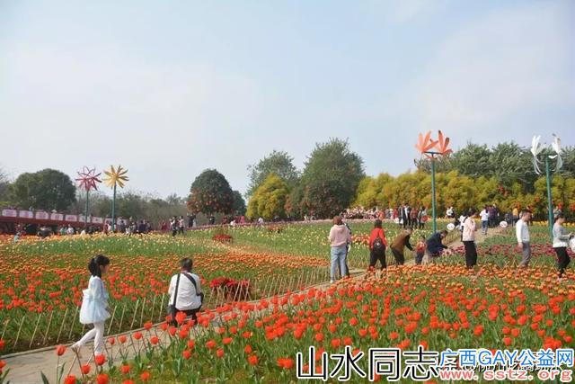 柳州春节活动推荐:这个春节哪也不去!就在柳州!