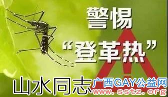 国庆出游注意——预防登革热,广西已已报告75例